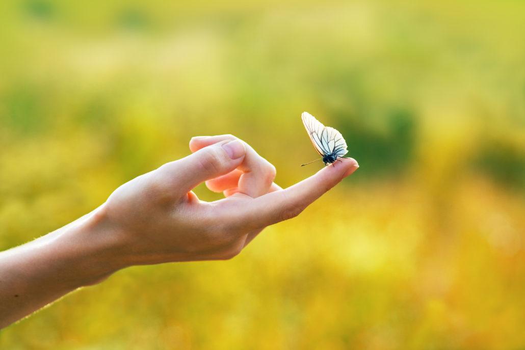 massaggio bioenergetico dolce